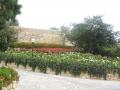 giardino17