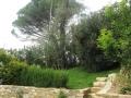 giardino29