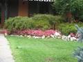 giardino30