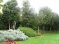 giardino35