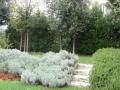 giardino37