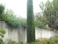 giardino46