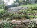 giardino50