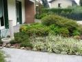 giardino61